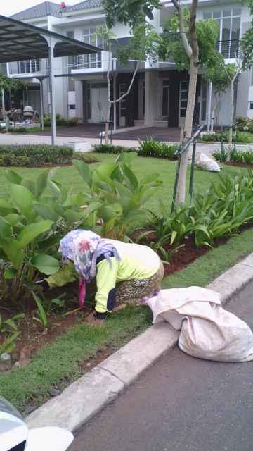 Landscaping_Biosis