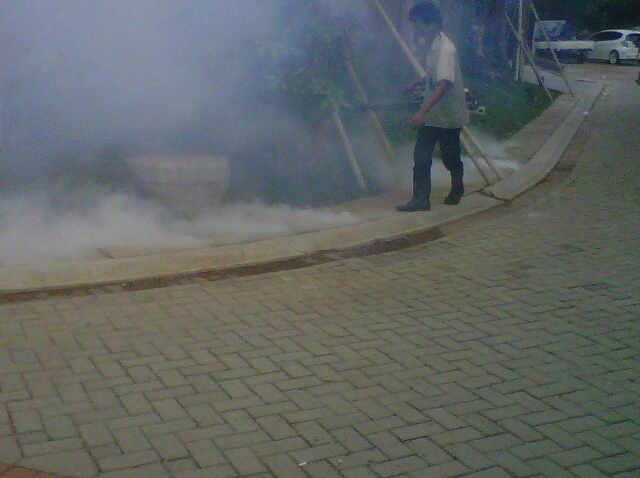 Foging di area komplek perumahan untuk membasmi nyamuk dewasa