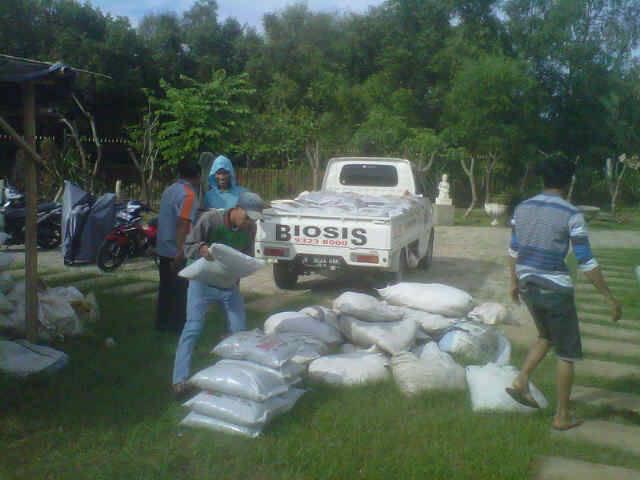 pemupukan-taman-oleh-tim-landscaping-biosis-2.jpg