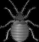 https://www.biosis.co.id/wp-content/uploads/2017/01/pengendalian-hama-serangga-kutu-biosis.co_.id_.png