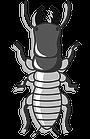 https://www.biosis.co.id/wp-content/uploads/2017/01/pengendalian-hama-serangga-rayap-biosis.co_.id_.png