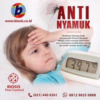www.biosis.co.id - 021.4400261 - Jasa Fogging Nyamuk Jasa Fogging Nyamuk, Jasa Pest Control, Aedes aegypti, Nyamuk Aedes aegypti di Jakarta, Bekasi, Depok